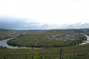 Typische Kurve des Moseltals bei Trittenheim